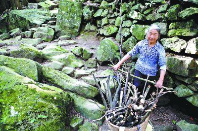 采石场遗址内,一位当地老人正在收集柴火,挂满绿苔的砂岩依稀可见当年斧凿劳作过的痕迹。